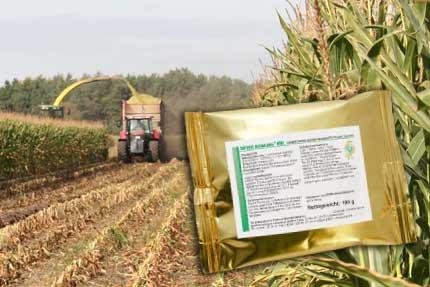 Выбор и применение косервантов при заготовке высококачественных кормов.